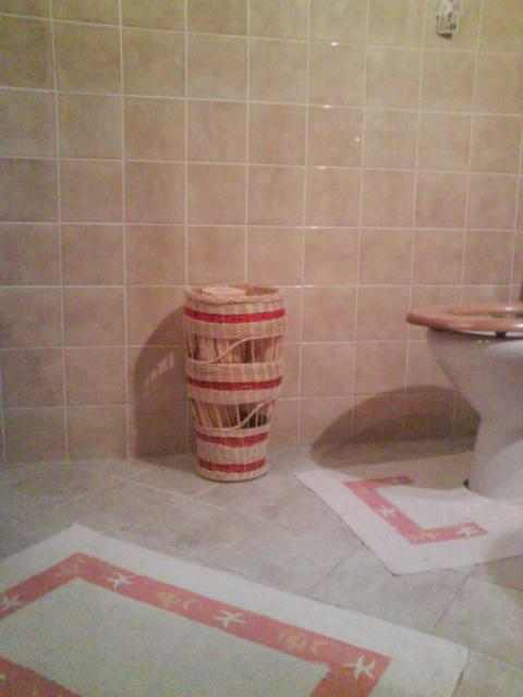 Kôš na WC papier má 45 cm